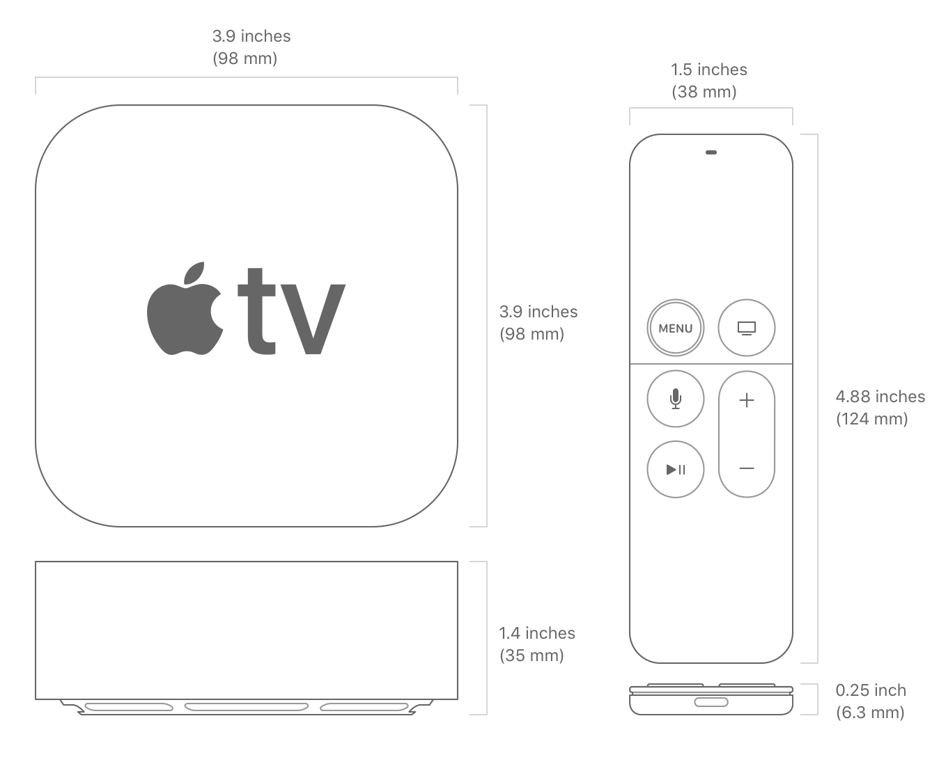 Apple TV Seize